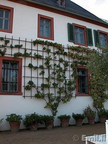 klostergarten-13.JPG