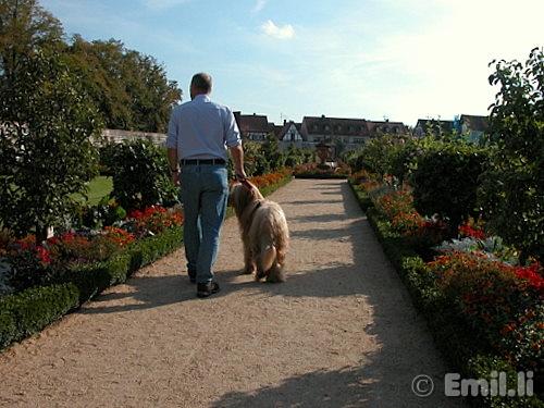 klostergarten.JPG
